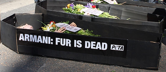 800px-Peta_Armani_Fur_is_Dead_(7984596565) cropped